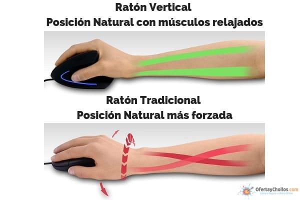 raton vertical vs raton tradicional